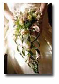 Wedding Supplies - Lake Winnipesaukee
