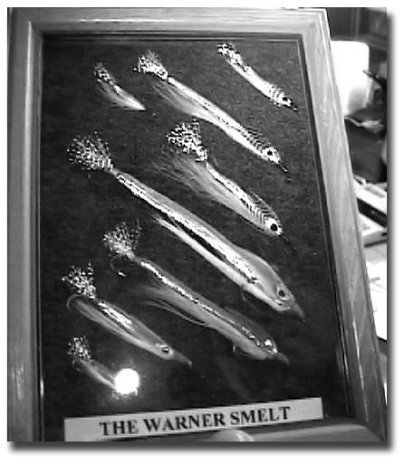 A framed display of the Warner smelt in various sizes.