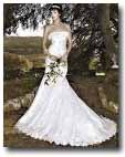 Wedding Dress - Lake Winnipesaukee