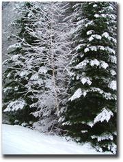 Lake Winnipesaukee Winter